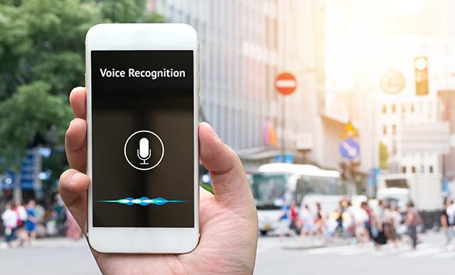 Voice Ecommerce